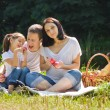 Family picnic with apples — Stock Photo