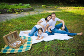 Family picnic in a park — Stock Photo