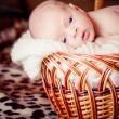 Newborn Baby Lies in basket and looks — Stock Photo