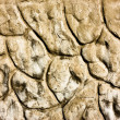 Stock Photo: Textrure of relief cement brown wall