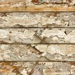 Wood grunge texture — Stock Photo