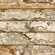 Stock Photo: Wood grunge texture