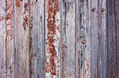 Wood cracky texture — Stock Photo