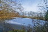 Kış kırsal — Stok fotoğraf