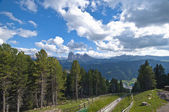 In the Dolomite Alps — Stockfoto