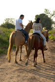 Horse Ride at the Sunset — Stock Photo