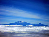 Mt. kilimanjaro the highest peak in africa — Stock Photo