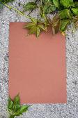List papíru na chodníku — Stock fotografie