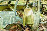 The old car cemetery — Stock Photo