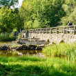 Old stone bridge — Foto Stock
