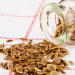 Stock Photo: Dill seeds