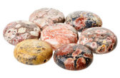 Spotted jasper coin beads — Stock Photo