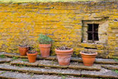 Pots by a wall — Stock Photo