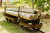 Old railway wagon with timber — Stock fotografie