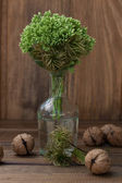 Still life with green flowers in a bottle and nuts — Stockfoto