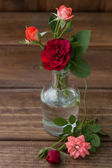 Small buds of roses in a glass bottle on a wooden texture — Stock Photo