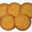 Maria biscuit — Stock Photo