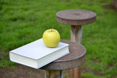 Apple and book on wood — Stock Photo