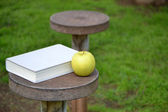 Apple and book — Stock Photo