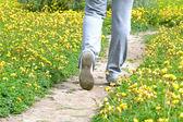 Femme qui marche dans la prairie — Photo