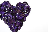 Heart made with petals — Stockfoto