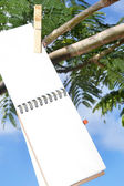 Notebook hanging from a tree — Stock Photo