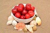Plums and shells — Stock Photo