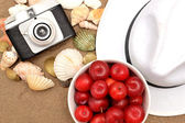 Red plums, old camera, shells and white hat on sand — Stock Photo