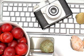 Laptop, plums and shells on wood — Stock Photo