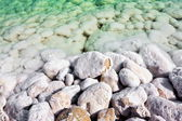 The overgrown stones salt waters of the dead sea in Israel — Stock Photo