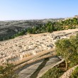 Ancient Jewish cemetery on the Mount of olives in Jerusalem — Stock Photo