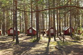Small houses in summer forest small houses in summer forest — Stock Photo