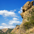Stock Photo: Stone head.cliffs of whimsical form.