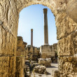 Baths of Antonius in Carthage Tunisia — Stock Photo