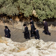 Stock Photo: Jews in national clothes go to gates of King David in Jerusalem