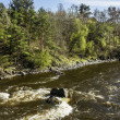 Rapids on river Vuoksnear Losevo station — Stock Photo #35207147