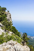 View from Mount Ai-Petri to Yalta and the coast of Crimea, Ukrai — Stock Photo