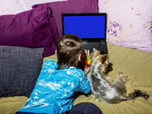 A little boy with a little dog looking at a laptop lying in be — Stock Photo
