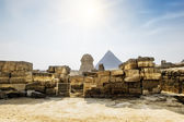 The Sphinx and the pyramid of Cheops in Giza in the background o — Stock Photo