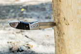 A knife thrust in the wood in the Woods — Stock Photo