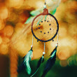 Dreamcatcher — Stockfoto #30978469