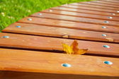 Leaf on the bench — Stock Photo