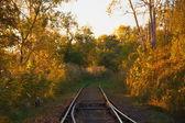 Rails 在黑暗的地方 — 图库照片