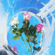 Roses in ice — Stock Photo