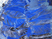 Ice feathers — Foto Stock