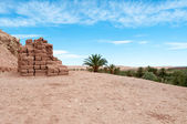 Moroccan landscape — Stock Photo