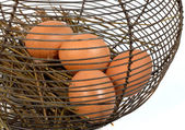 Four eggs in a basket in metal — Stock Photo