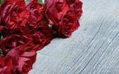 Okraj růží — Stock fotografie