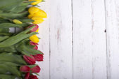 Tulips on white wooden planks eves — Foto Stock