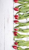 тюльпаны на канун белые деревянные доски — Стоковое фото